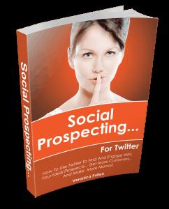 3D Book Cover - Social Prospecting For Twitter
