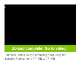 How to Protect Your Online Program Videos in Vimeo Image 3