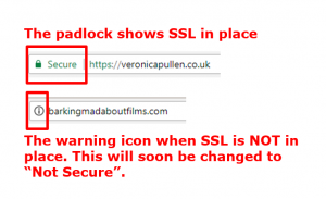 Important Online Changes You Cannot Afford to Ignore SSL