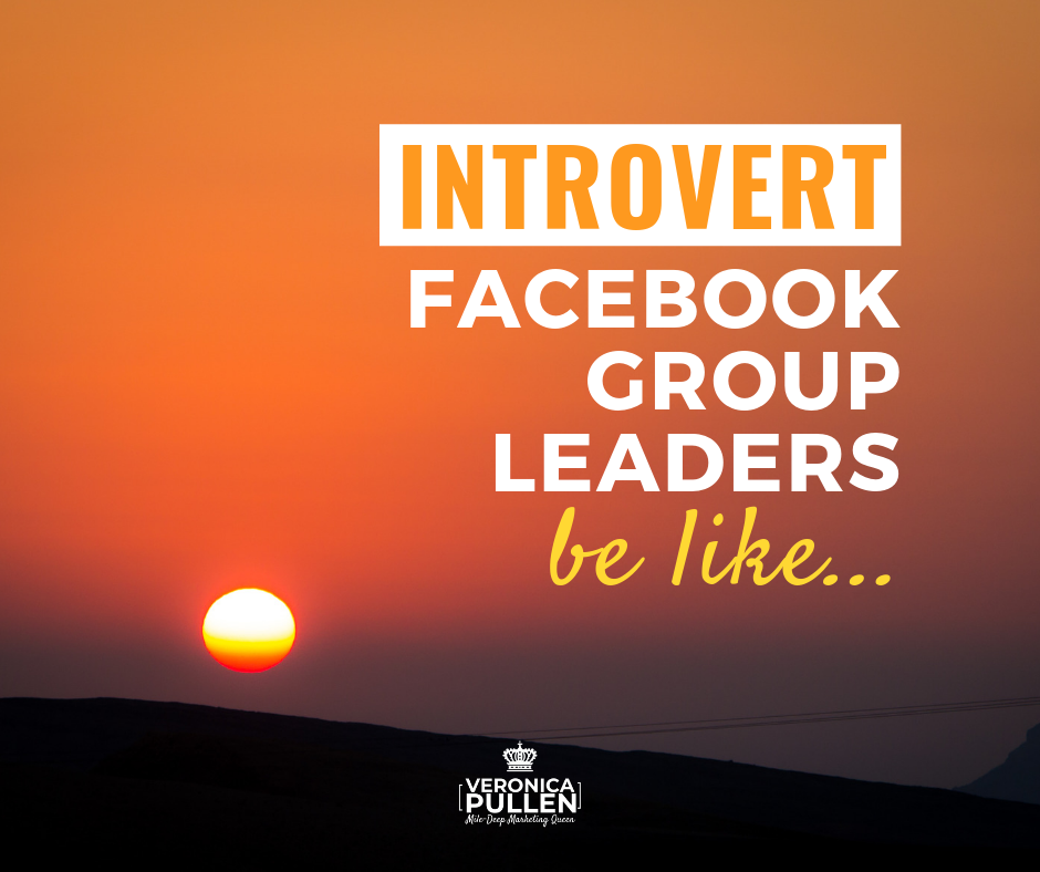 Introvert Facebook Group Owners be Like…
