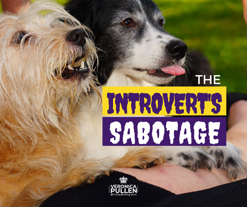 How Introvert Coaches and Experts Sabotage Their Success Online