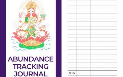Do You Track Your Abundance?